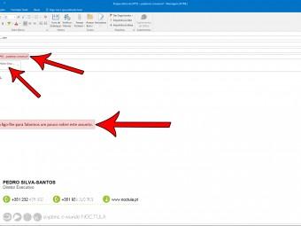Contacte empresas por e-mail