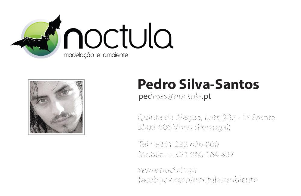 Cartão Pedro Silva-Santos com foto de praia